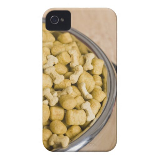 Close-up of dog food in a dog bowl iPhone 4 cases
