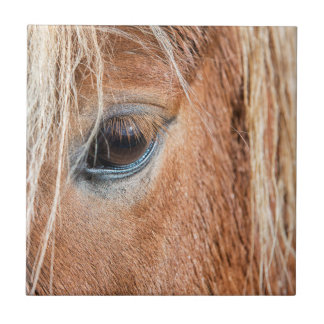 Close-up of eye and head of Icelandic horse Ceramic Tile