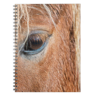 Close-up of eye and head of Icelandic horse Spiral Notebook