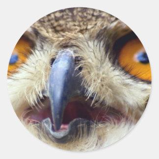Close-up of eyes of eagle owl round sticker