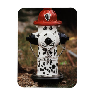 Close-Up of Fire Hydrant Rectangular Photo Magnet