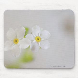 Close-up of flowers mouse pad