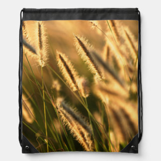 Close-Up Of Foxtail Grass. Hogsback Drawstring Bags