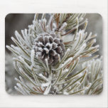 Close-up of frozen pine cone, Yellowstone Mousepad