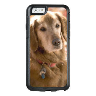 Close up of golden labrador retriever dog OtterBox iPhone 6/6s case