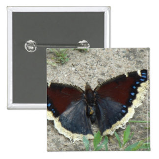 Close up of Gorgeous Mourning Cloak Butterfly Button