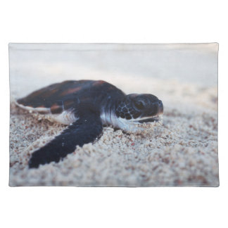 Close-Up of green sea turtle hatchings 1 Cloth Placemat