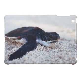 Close-Up of green sea turtle hatchings 1 iPad Mini Case