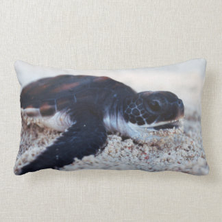 Close-Up of green sea turtle hatchings 1 Pillow