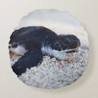Close-Up of green sea turtle hatchings 1 Round Pillow