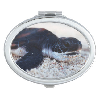 Close-Up of green sea turtle hatchings 1 Vanity Mirror