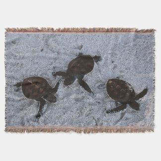 Close-Up of green sea turtle hatchings 2 Throw Blanket