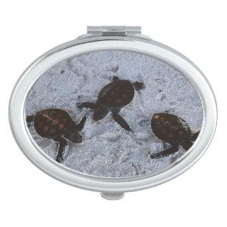 Close-Up of green sea turtle hatchings 2 Vanity Mirror