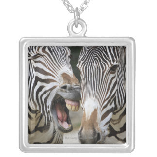 close-up of head of zebras, Equus Sp., Berlin Silver Plated Necklace