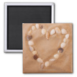 Close up of heart shape made of shells on sand refrigerator magnets