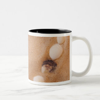 Close up of heart shape made of shells on sand Two-Tone coffee mug
