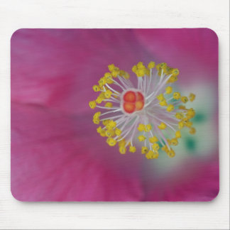 Close-up of Hibiscus flower stamen, Hibiscus Mouse Pad