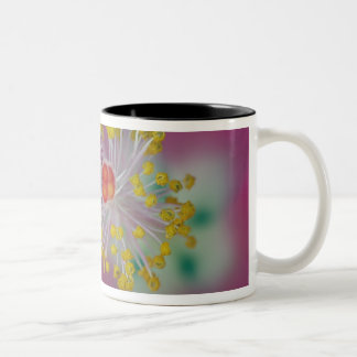 Close-up of Hibiscus flower stamen, Hibiscus Two-Tone Coffee Mug