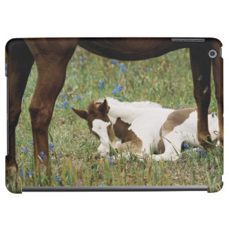 Close-up of Horse and Baby Colt iPad Air Cover