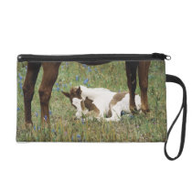 Close-up of Horse and Baby Colt Wristlet