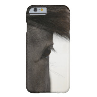 Close-up of  horse eye and hair barely there iPhone 6 case