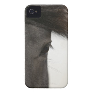 Close-up of  horse eye and hair iPhone 4 cover