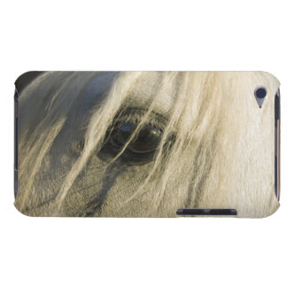 Close-up of Horse eye iPod Case-Mate Case