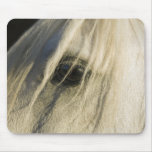 Close-up of Horse eye Mouse Pad