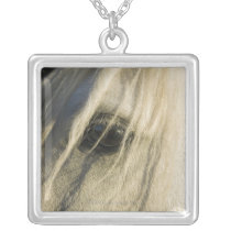 Close-up of Horse eye Silver Plated Necklace