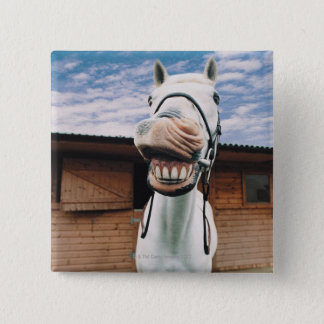 Close-up of Horse with Mouth Open Pinback Button