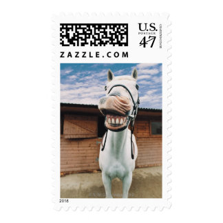 Close-up of Horse with Mouth Open Postage