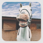 Close-up of Horse with Mouth Open Square Sticker