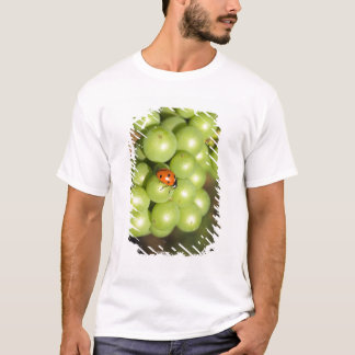 Close up of lady bug on green Pinot Noir grapes T-Shirt