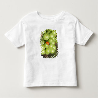Close up of lady bug on green Pinot Noir grapes Toddler T-shirt