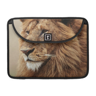 Close-up of male Lion Sleeve For MacBook Pro