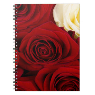 CLOSE UP OF of roses Notebook