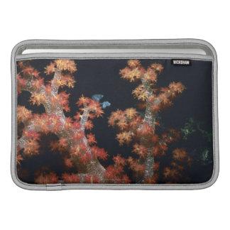 Close-up of Orange Soft Coral underwater, Palau MacBook Sleeve