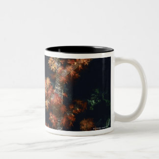 Close-up of Orange Soft Coral underwater, Palau Two-Tone Coffee Mug