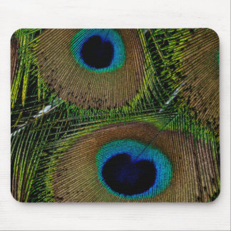 Close-up of peacock feathers mouse pad