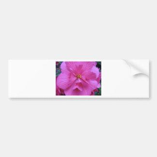 Close up of Pink Flower Bumper Sticker