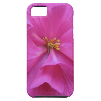 Close up of Pink Flower iPhone SE/5/5s Case