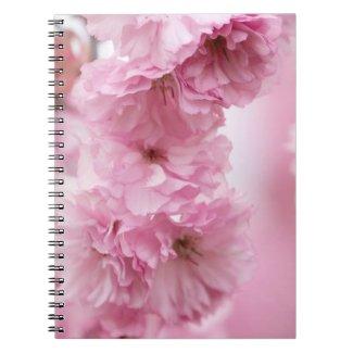 Close Up of Pink Kanzan Cherry Blossoms Notebook