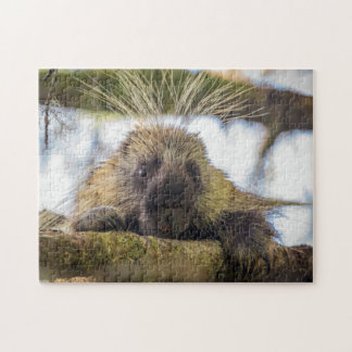 Close-up of porcupine in a tree jigsaw puzzle