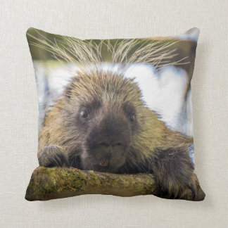 Close-up of porcupine in a tree throw pillow