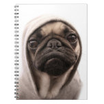 Close up of pug wearing hoodie. note books
