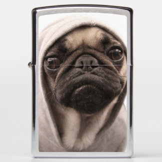Close up of pug wearing hoodie. zippo lighter