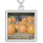 Close-up of pumpkins custom necklace