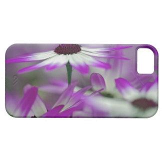 Close-up of purple flower, Keukenhof Garden, iPhone 5 Covers