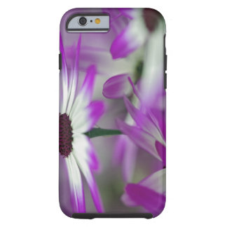 Close-up of purple flower, Keukenhof Garden, Tough iPhone 6 Case