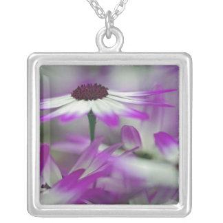 Close-up of purple flower, Keukenhof Garden, Square Pendant Necklace